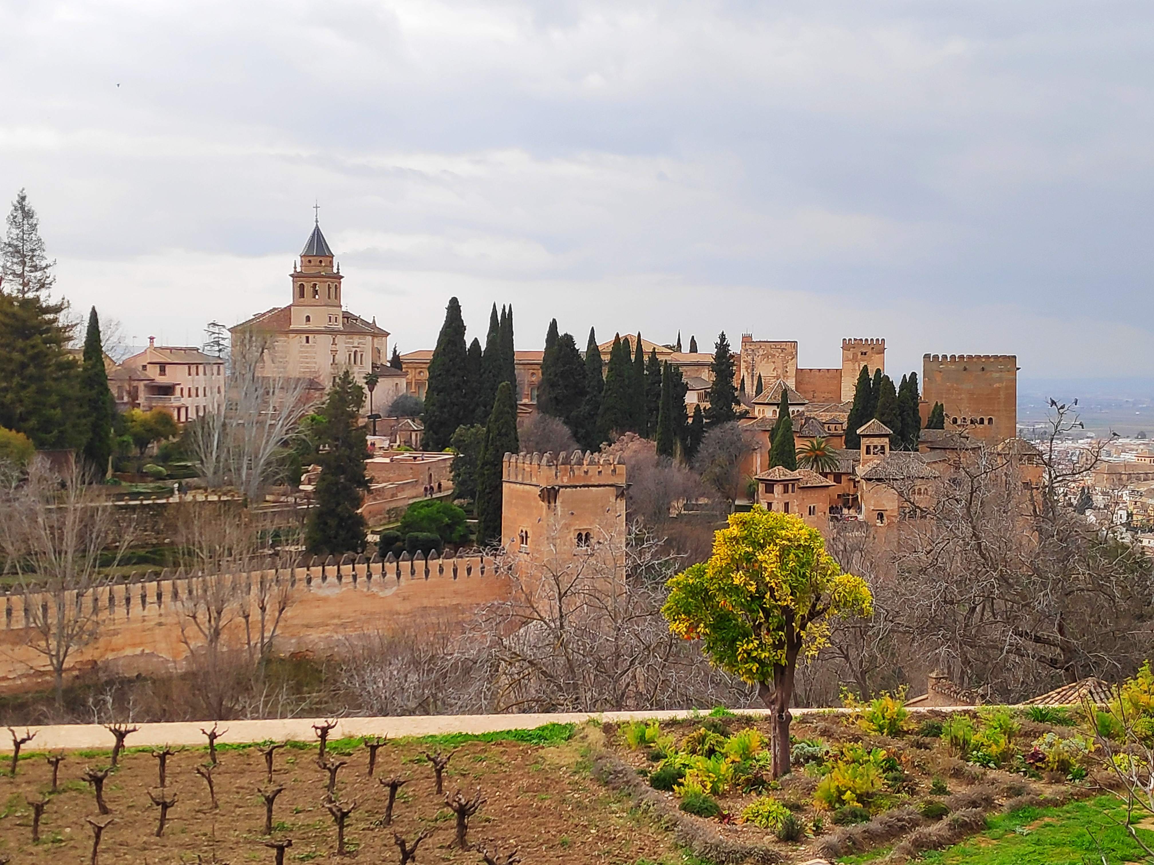 Image of Day trip to Granada with guided visit to the Alhambra